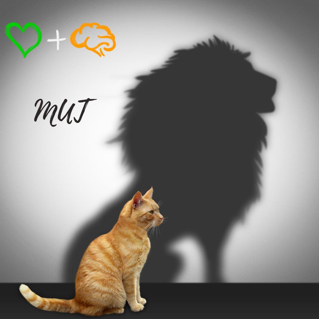 Katze und Löwe und Mut